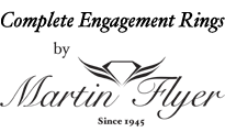 Martin Flyer Complete