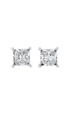 Tru-Reflection Earrings 155-1604 product image